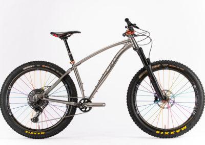 S7 v2 Bike Profile View