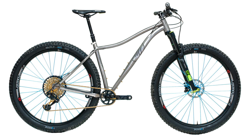 Wayard Bike Profile View